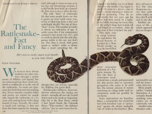 Rattlesnakes fact and fancy_Family safety Jun65