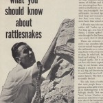C.Fletcher on rattlesnakes