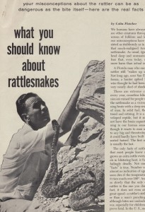 What you should know about rattlesnakes_Family Safety spring64